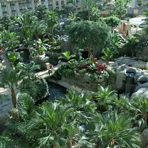 6 of 8: Gaylord Palms Resort - Views of the Atrium from a guest room balcony