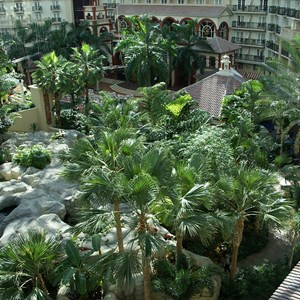 8 of 8: Gaylord Palms Resort - Views of the Atrium from a guest room balcony