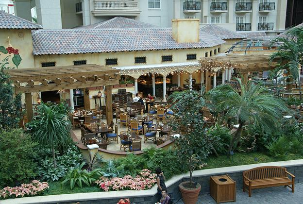 Gaylord Palms Restaurants