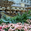 Gaylord Palms Resort - Villa de Flora serves breakfast, lunch and dinner