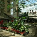 Gaylord Palms Resort - The Old Hickory Steakhouse offers dinner only, and requires Business-casual attire