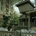 Gaylord Palms Resort - Like Villa de Flora, the feeling of being outside is combined with the comfort of being inside the atrium