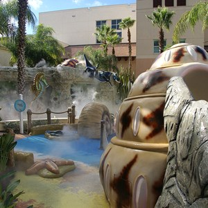 4 of 6: Gaylord Palms Resort - Swimming Pools