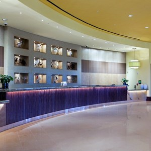 6 of 15: Hilton Orlando Bonnet Creek - Front desk