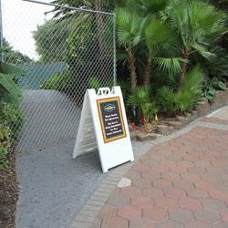 Construction walls up around parts of Disney's Polynesian Resort