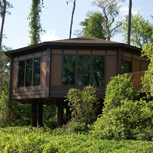 4 of 6: Treehouse Villas at Disneys Saratoga Springs Resort and Spa - New Treehouse Villas buildings