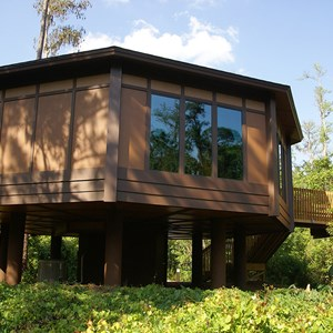 3 of 6: Treehouse Villas at Disneys Saratoga Springs Resort and Spa - New Treehouse Villas buildings