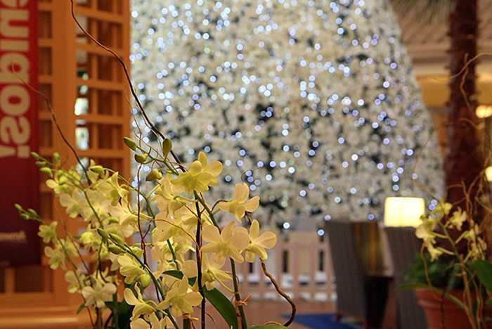 Walt Disney World Dolphin Resort holiday decorations 2009