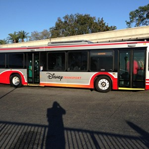 1 of 1: Bus Transportation - New bus transport paint scheme
