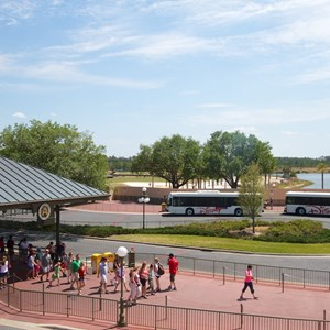 1 of 6: Bus Transportation - Magic Kingdom bus stop expansion - construction walls in place
