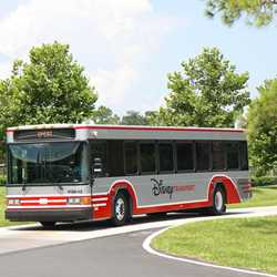 2013 Walt Disney World bus fleet color scheme
