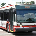 Bus Transportation - 2013 White Bus color scheme