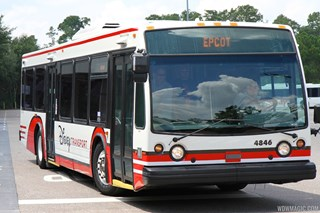 2013 White Bus color scheme