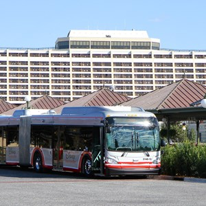 1 of 5: Bus Transportation - Walt Disney World articulated bus
