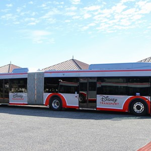 2 of 5: Bus Transportation - Walt Disney World articulated bus