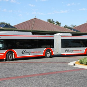 3 of 5: Bus Transportation - Walt Disney World articulated bus
