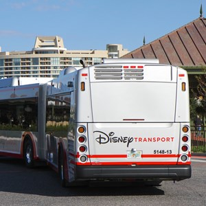 4 of 5: Bus Transportation - Walt Disney World articulated bus