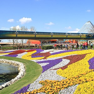 6 of 9: Walt Disney World Monorail System - Monorail TRON and the Epcot Flower and Garden Festival
