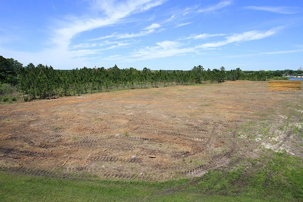 TTC area cleared land