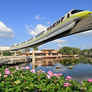 6 of 7: Walt Disney World Monorail System - Monorail Lime