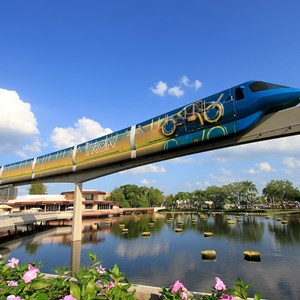 9 of 9: Walt Disney World Monorail System - Monorail TRON