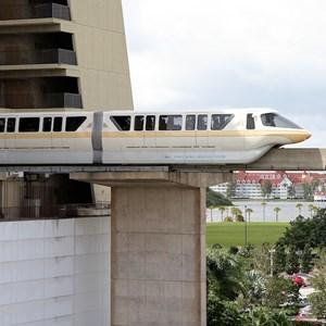 4 of 8: Walt Disney World Monorail System - Monorail Peach