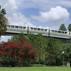 3 of 7: Walt Disney World Monorail System - Monorail Lime