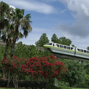 4 of 7: Walt Disney World Monorail System - Monorail Lime