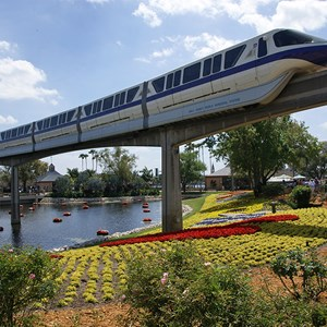 1 of 1: Walt Disney World Monorail System - Monorail Purple