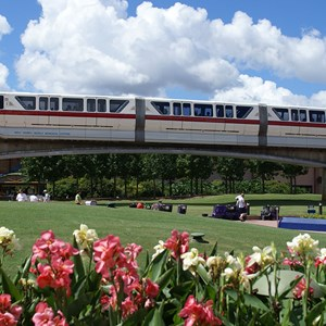 3 of 5: Walt Disney World Monorail System - Monorail Red