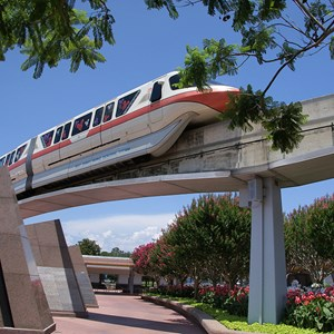 1 of 1: Walt Disney World Monorail System - Monorail Coral