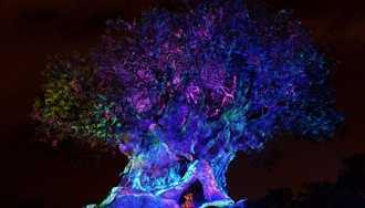 7 Techno-Magical Experiences at Walt Disney World!