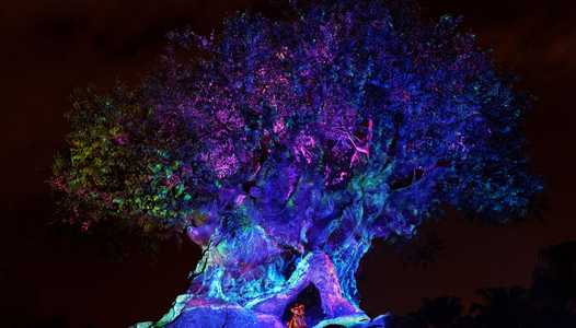 7 Techno-Magical Experiences at Walt Disney World!