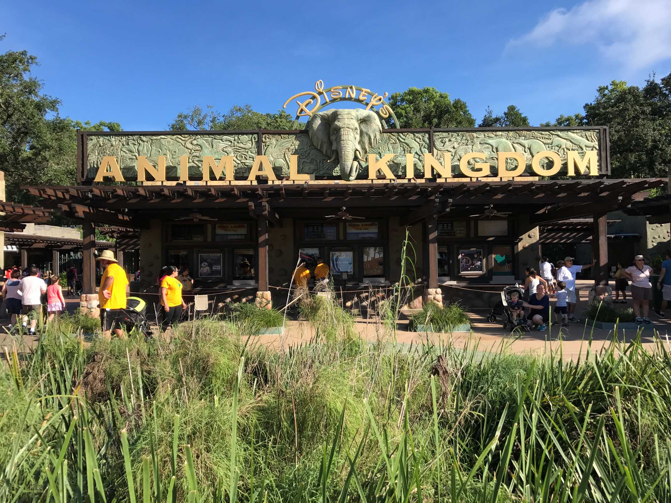 Animal Kingdom's main entrance in full sun