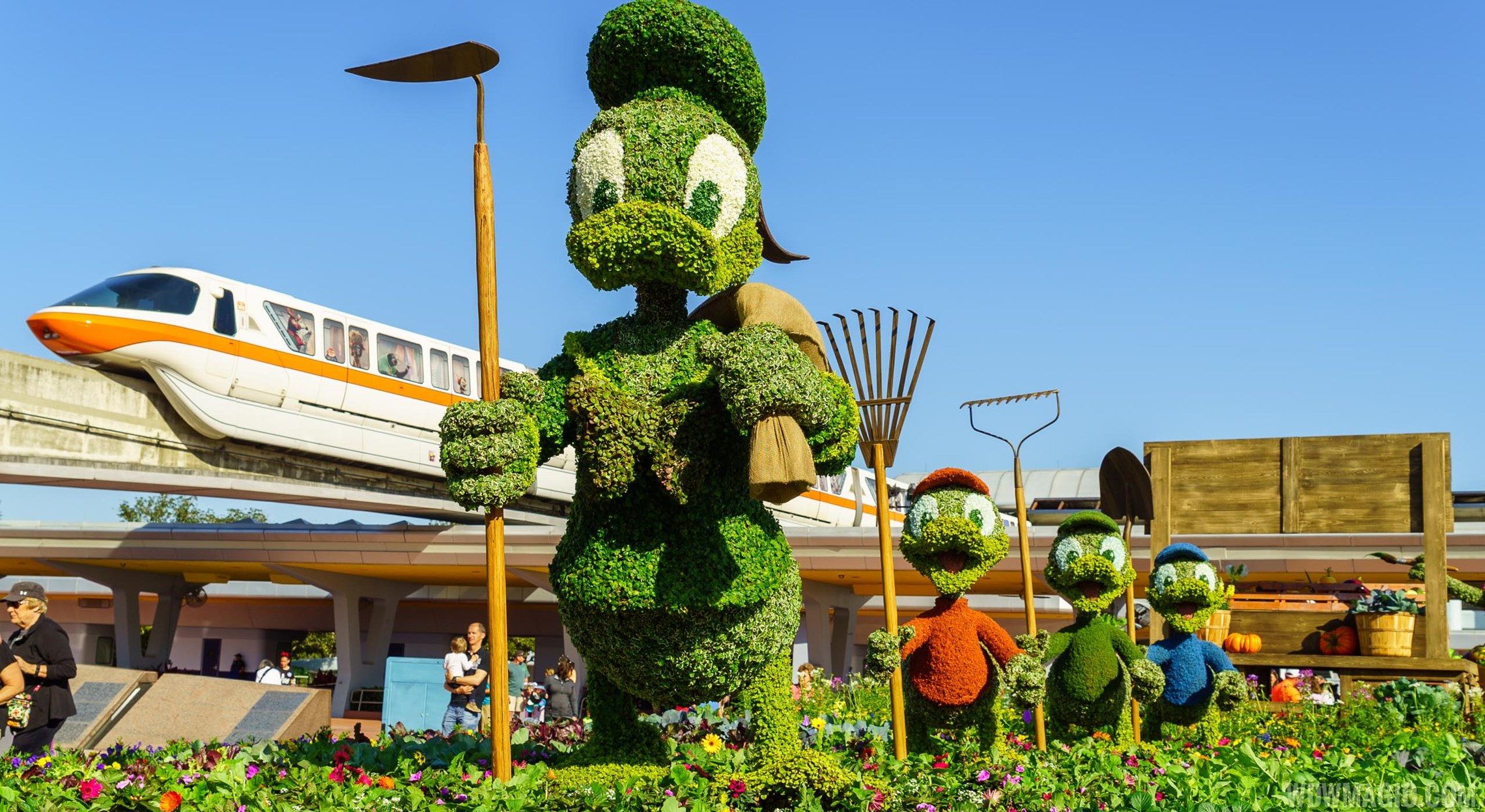 Donald, Huey, Dewy and Louie at the Flower & Garden Festival