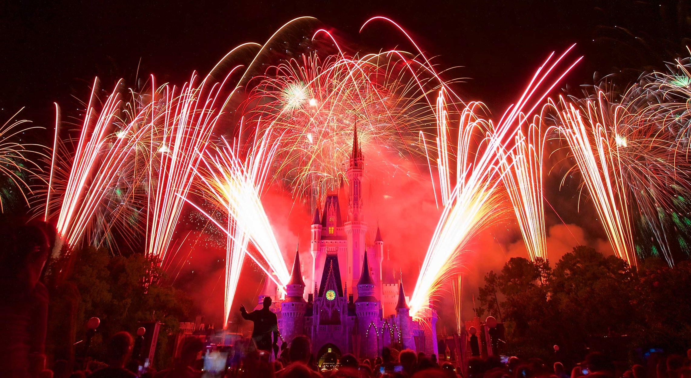 Fireworks at the Magic Kingdom