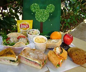 Animal Kingdom Picnic in the Park
