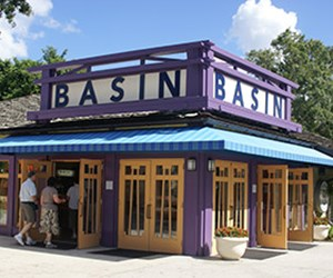 Basin