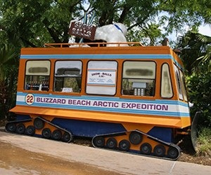 Blizzard Beach Artic Expedition