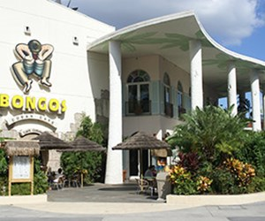 Bongo&#39;s Cuban Cafe