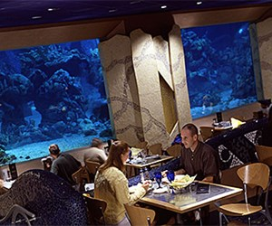 Coral Reef Restaurant