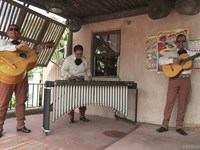 Mexican Marimba Trio