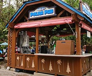 Polar Pub