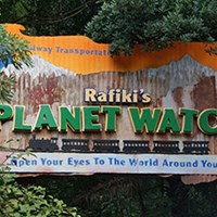 Rafiki's Planet Watch