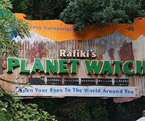 Rafiki&#39;s Planet Watch