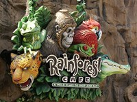 Rainforest Cafe Downtown Disney