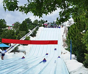 Toboggan Racer