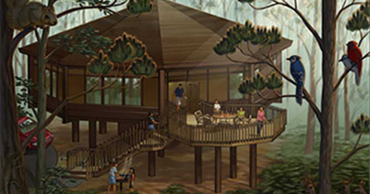 Treehouse Villas At Disneys Saratoga Springs Resort And Spa