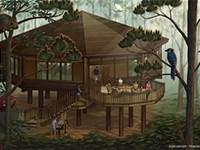 Treehouse Villas at Disneys Saratoga Springs Resort and Spa