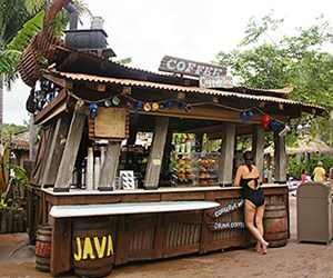Typhoon Lagoon Coffee
